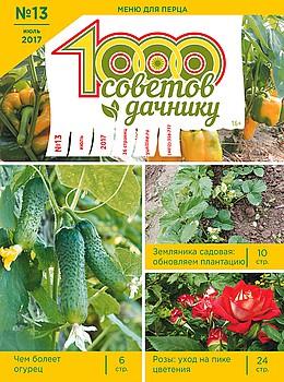 1000 СОВЕТОВ ДАЧНИКУ №13 2017