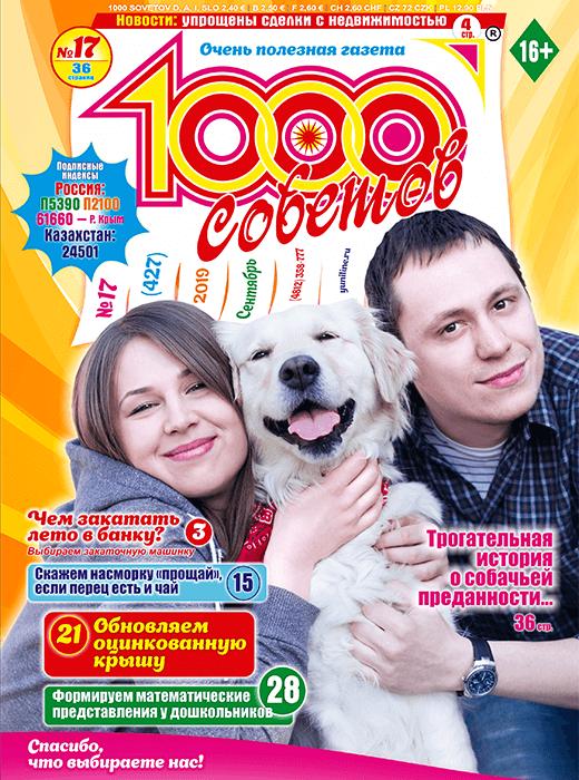 1000 СОВЕТОВ №17 2019