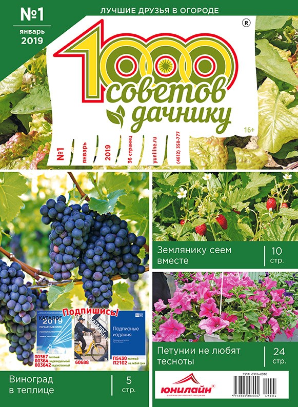 1000 СОВЕТОВ ДАЧНИКУ №1 2019