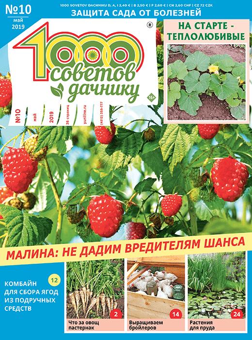 1000 СОВЕТОВ ДАЧНИКУ №10 2019