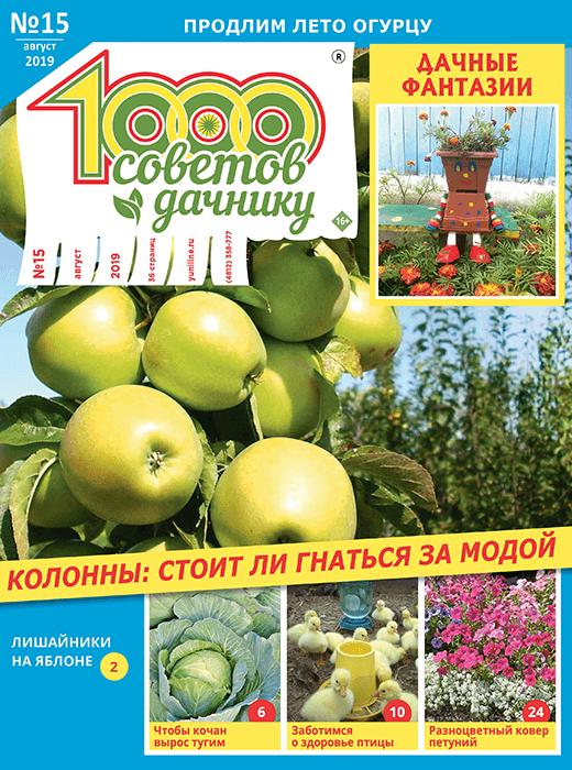 1000 СОВЕТОВ ДАЧНИКУ №15 2019