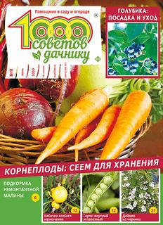 1000 СОВЕТОВ ДАЧНИКУ №11 2020