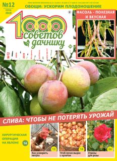 1000 СОВЕТОВ ДАЧНИКУ №12 2019