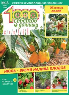 1000 СОВЕТОВ ДАЧНИКУ №13 2019