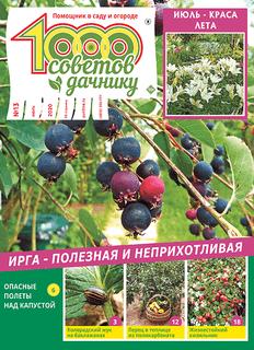 1000 СОВЕТОВ ДАЧНИКУ №13 2020
