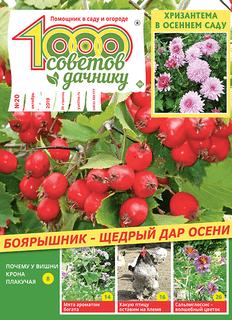 1000 СОВЕТОВ ДАЧНИКУ №20 2019