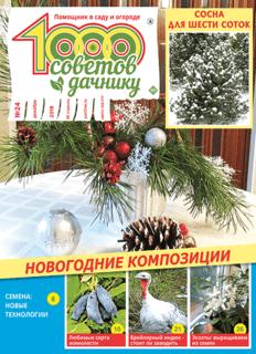 1000 СОВЕТОВ ДАЧНИКУ №24 2019