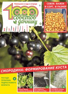 1000 СОВЕТОВ ДАЧНИКУ №5 2020