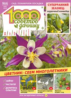 1000 СОВЕТОВ ДАЧНИКУ №6 2019