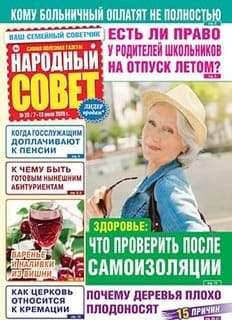 Народный совет №28 2020