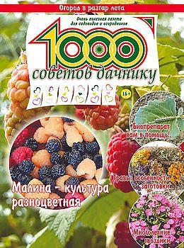 1000 СОВЕТОВ ДАЧНИКУ №12 2016