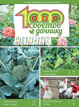 1000 СОВЕТОВ ДАЧНИКУ №14 2016
