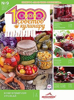 1000 СОВЕТОВ КУЛИНАРУ №9 2017