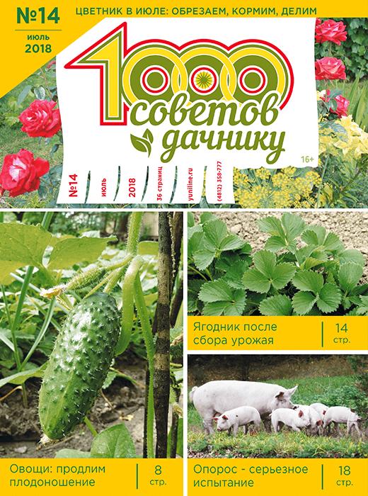 1000 СОВЕТОВ ДАЧНИКУ №14 2018